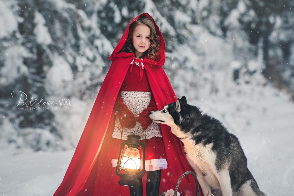 sesja z psem husky