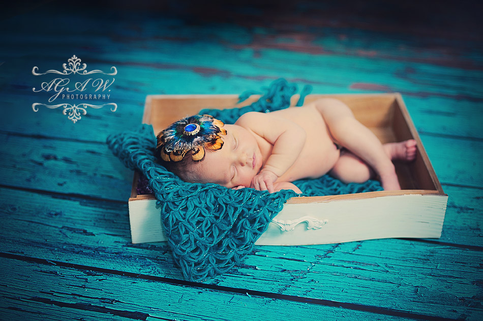 sesja zdjęciowa dla noworodka