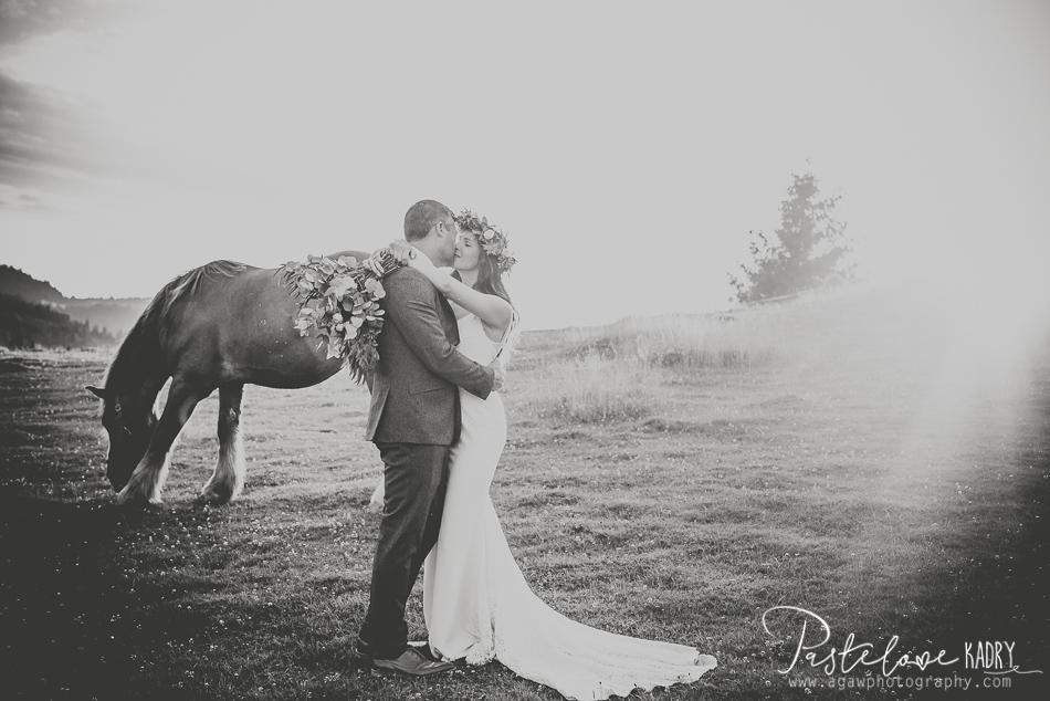 zdjęcia ślubne z koniem