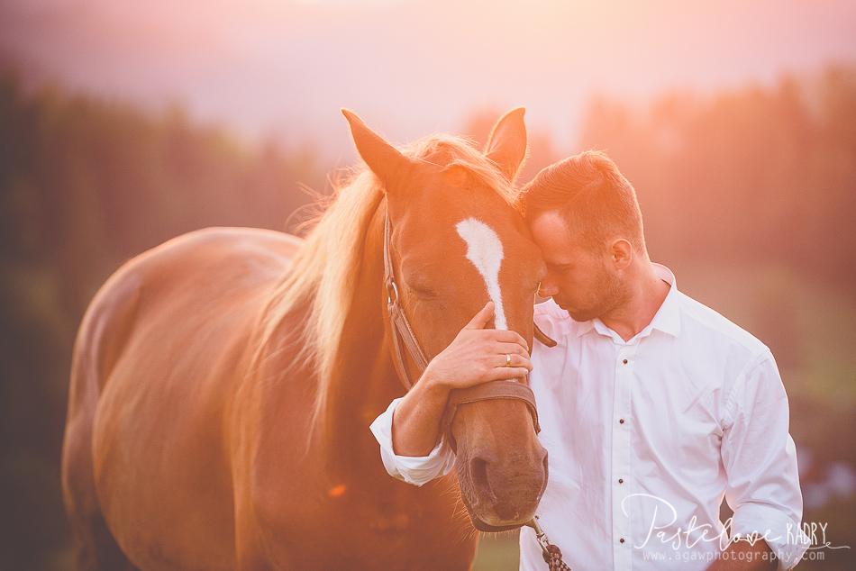 sesja ślubna koń